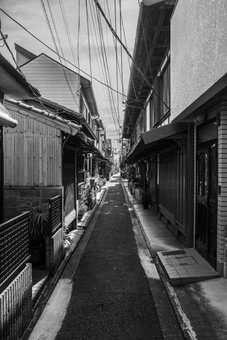 3 KYOTO_kyoto_18