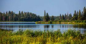 Edmonton Elk Island13