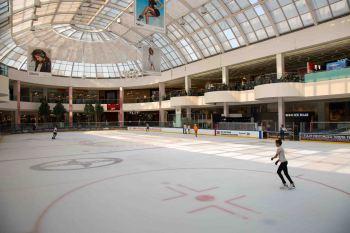 Edmonton the mall39