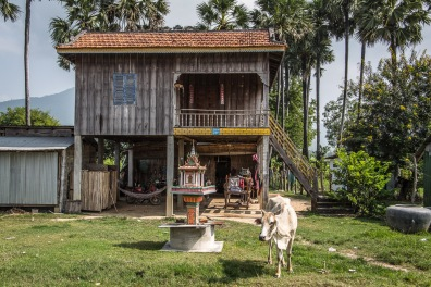serrini_cambodia-103
