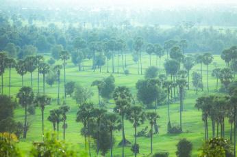 serrini_cambodia-64
