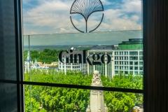 ginko_bar_2